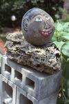 Closeup of Coconut Head by James Smith Pierce