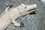 Alligator on Rock Detail by James Smith Pierce