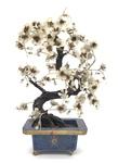 Hardstone Prunus Tree in Cloísonne Jardineers by Artist Unknown