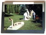 """Herman Rusch: Prairie Moon Museum and Garden III."" Portfolio of 24 Photographic Works by James Smith Pierce"