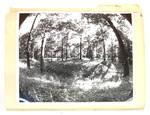 """Newark: Park"" Folder of 47 Photographic Works by James Smith Pierce"