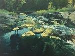 Dark Water by John M. Vleck