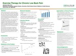 Exercise Therapy for Chronic Low Back Pain
