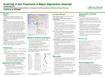 Exercise in the treatment of major depressive disorder by Larissa Ann Haug