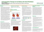 Anticoagulation Therapy for the Elderly with Atrial Fibrillation