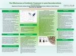 The Effectiveness of Antibiotic Treatment in Lyme Neuroborreliosis