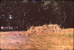 (002) Mound August 1971 by James Smith Pierce