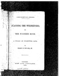 Planting the Wilderness; or, The Pioneer Boys A Story of Frontier Life