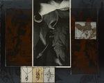 Goya and the Sorrows of Botany by Rosemarie Bernardi