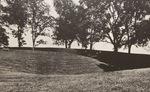 Lexington: Adena Park by Artist Unknown