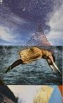 The Pearl Diver by Alisa Yang